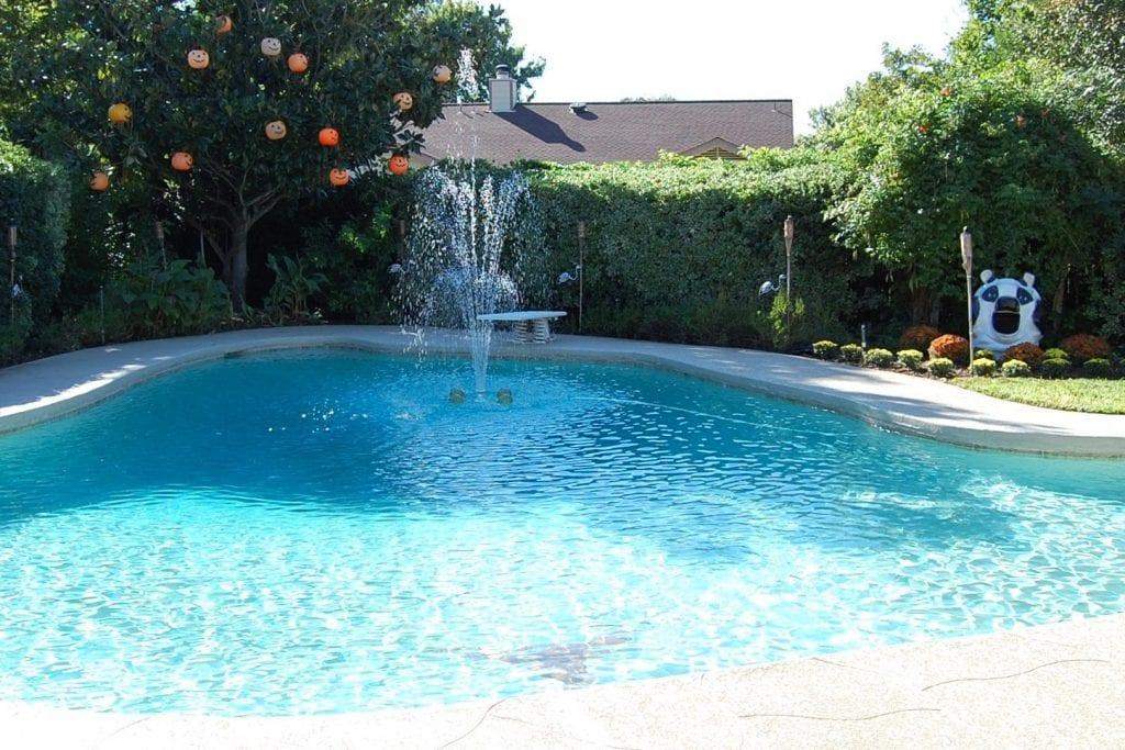 Halloween Pool