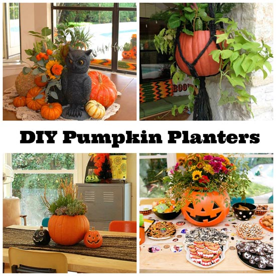 pumpkin-planter