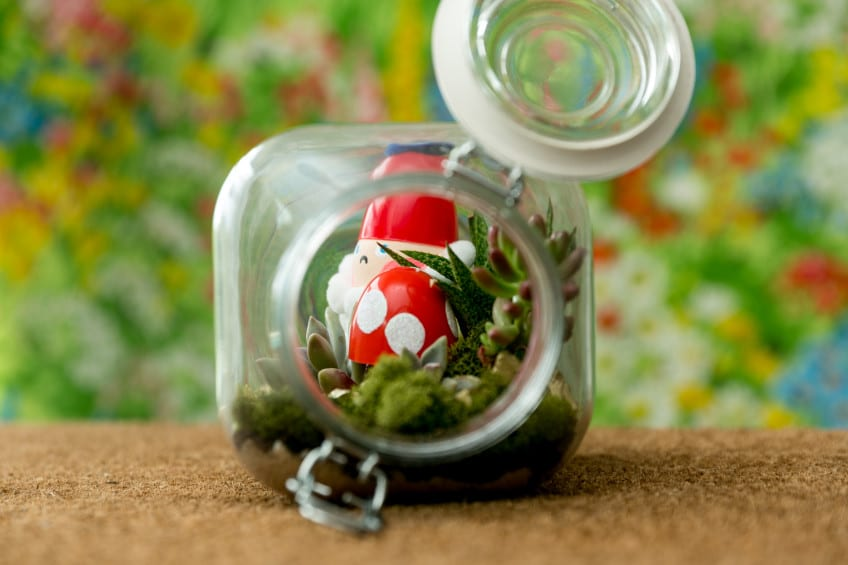 How to Make a Gnome Terrarium.