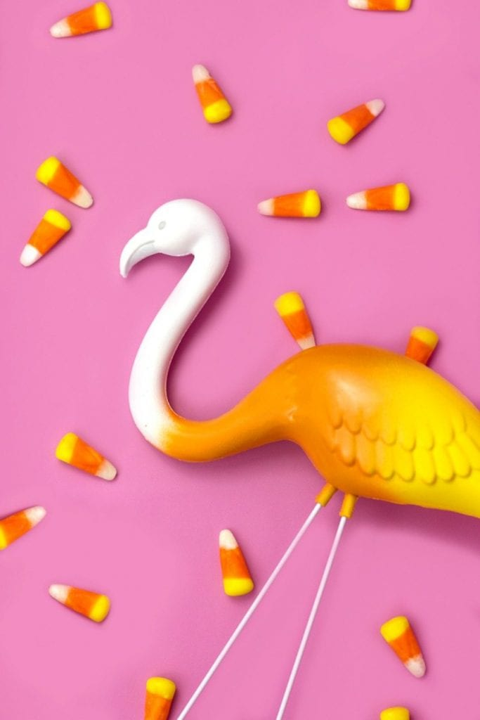 Candy Corn Flamingo by Glitter in My Tea