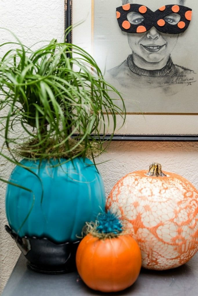 Teal pumpkin plants and planters for Halloween by Jennifer Perkins