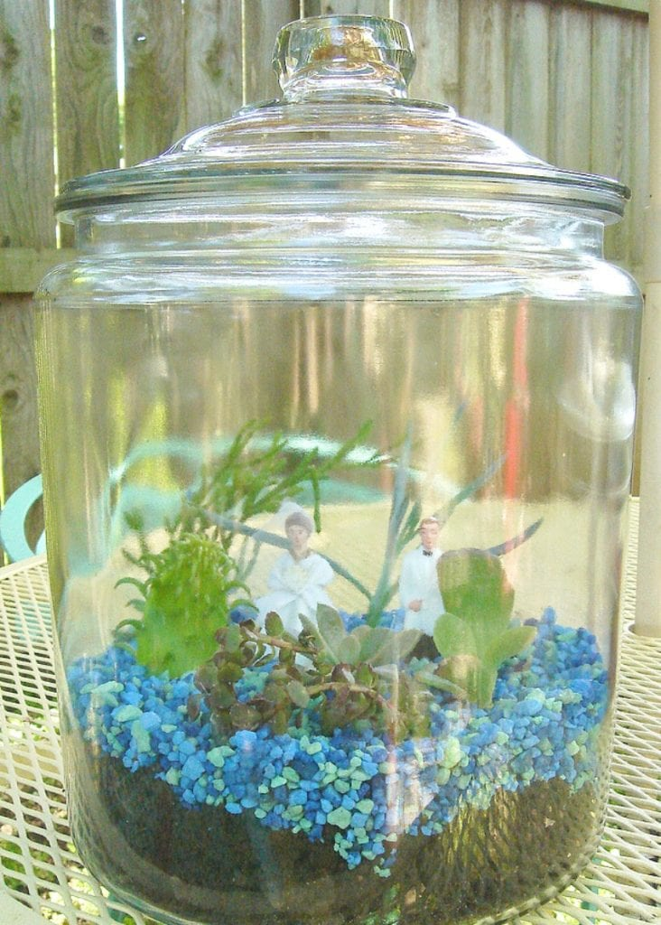 Try a wedding themed terrarium for your centerpieces by Jennifer Perkins