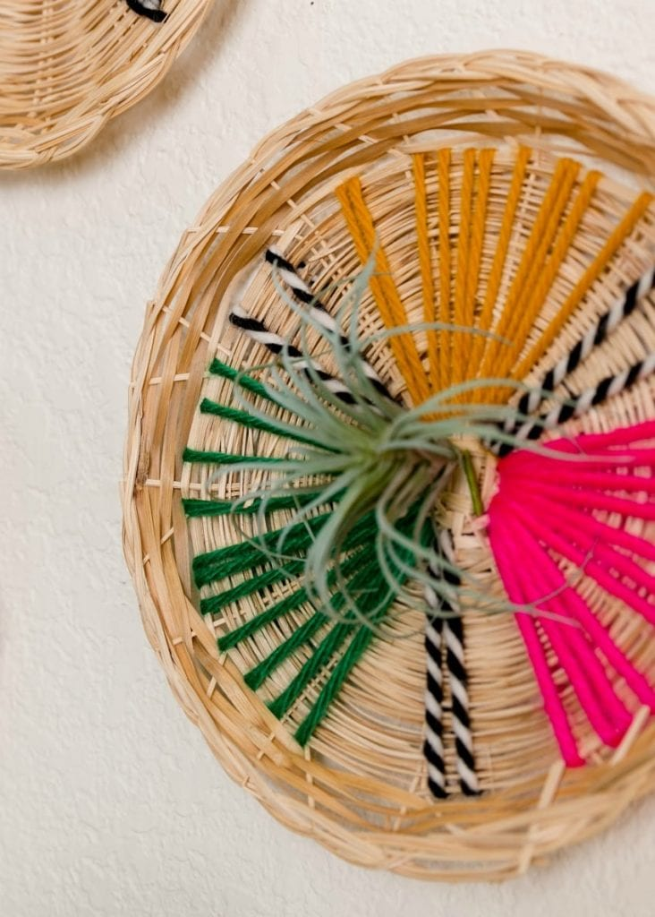 Boho wicker wall hanging with yarn stitches and air plant by Jennifer Perkins