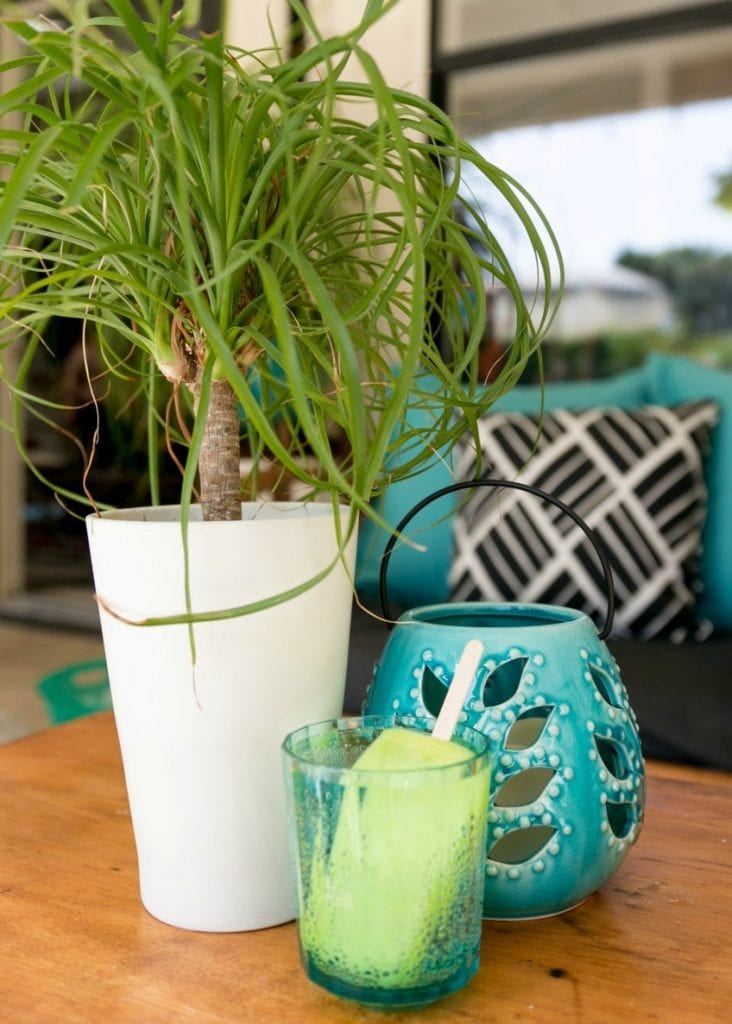 Patio table with plants, lanterns and a popsicle cocktail.