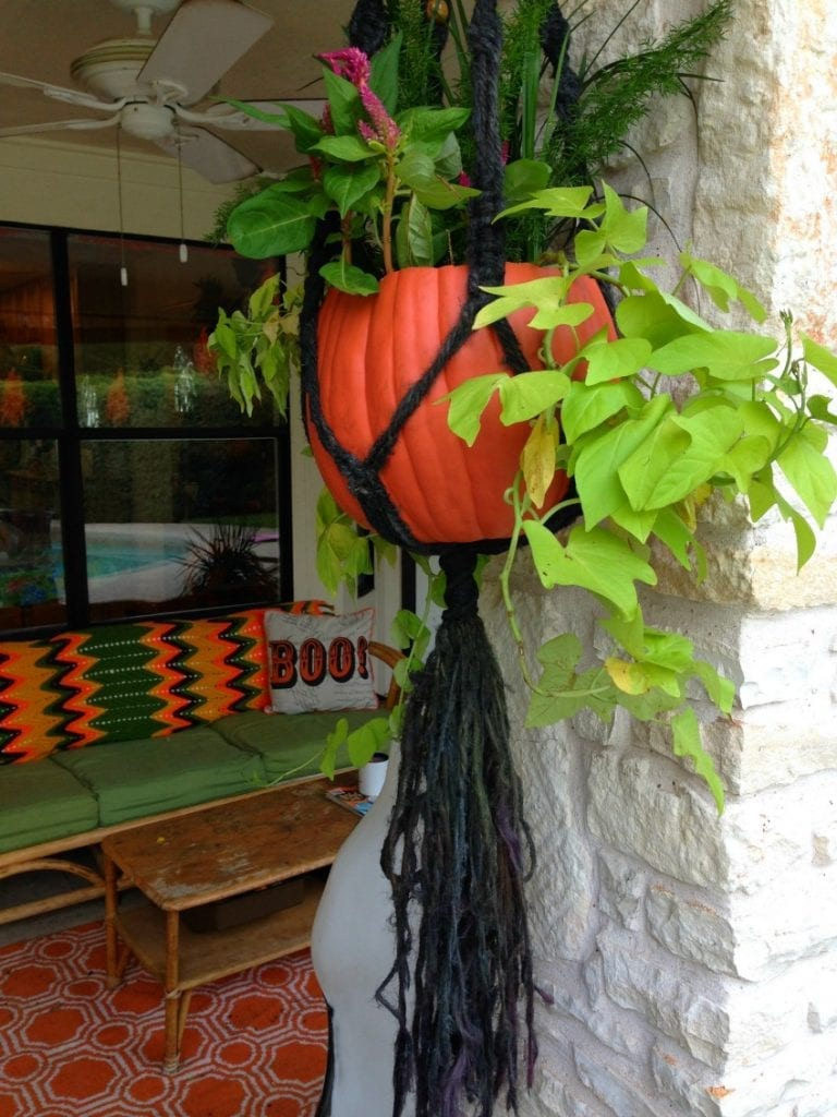 Pumpkin Planter Hanging Basket