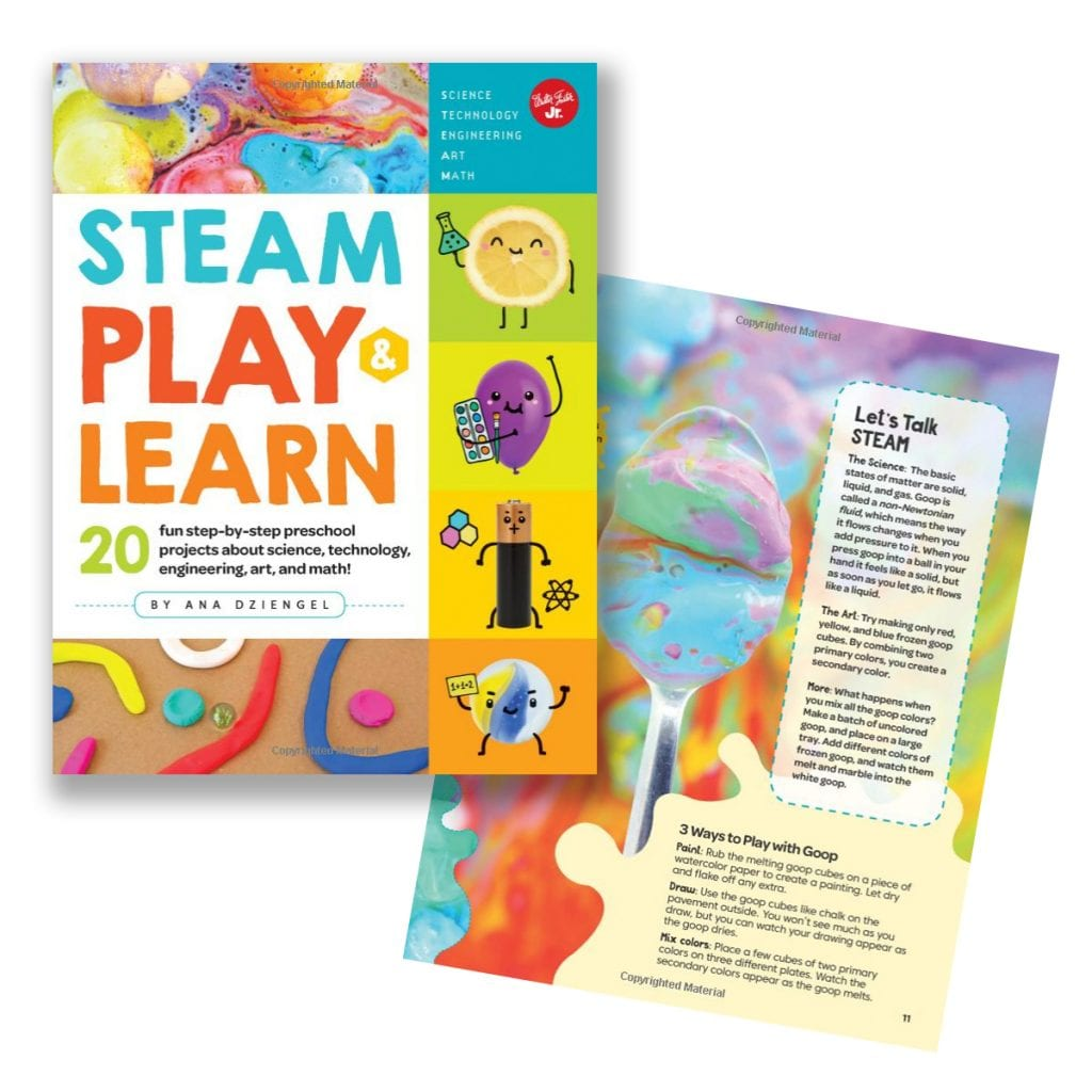 Steam play and learn book by Ana Dziengel